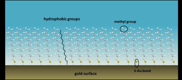 hydrophobic2