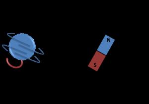 spinmagnet