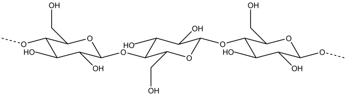 structure of the cellulose molecule