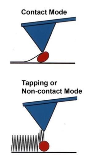 Contact mode vs tapping/non-contact mode