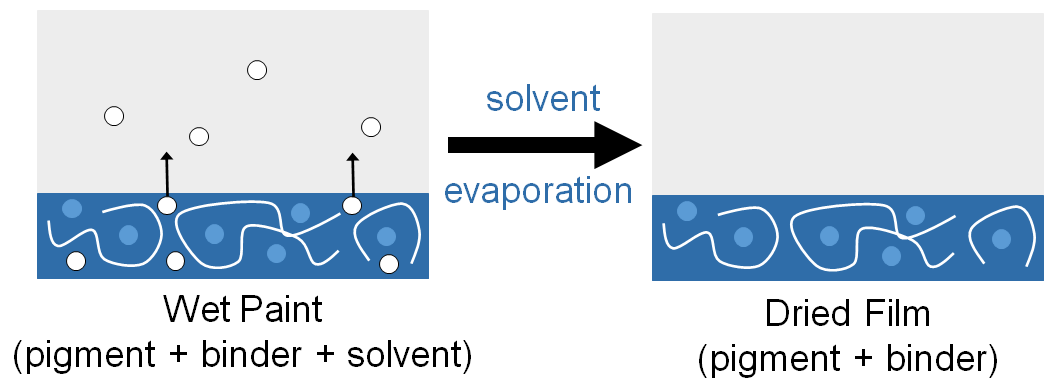 Schematic showing the solvent evaporation process for film formation during paint drying